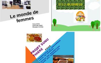 Les documents du plan d'affaires et la présentation